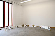 Erdem Taşdelen | I Wish To Be Absorbed, 2010