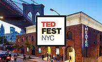 TEDFest 2017