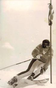 Ian Verchere, alpine skiing